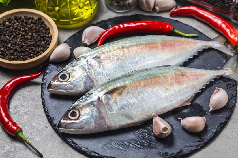 ماهیِ چرب، ماده ی غذایی موثر در درمان بی خوابی