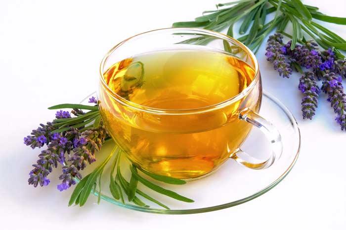 اسطوخودوس و چای اسطوخودوس