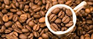 کوپی لواک گران ترین قهوه دنیا