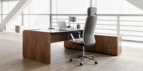 صندلی مدیریتی چیست؟