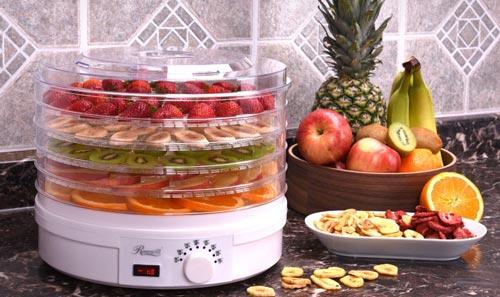 در هنگام خرید میوه خشک کن به چه نکاتی باید توجه کنیم؟
